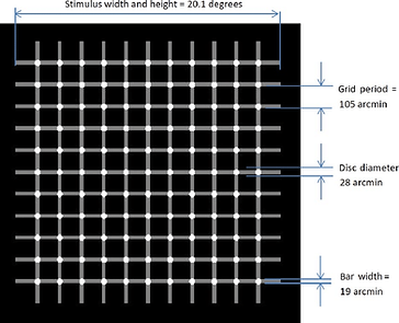 The-scintillating-grid-illusion-This-eff