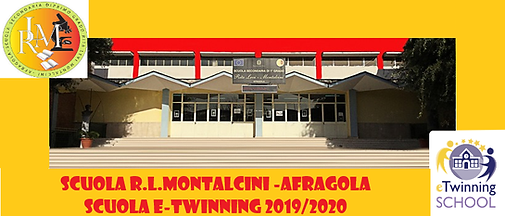 collage 2 montalcini.png