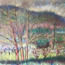 Landscape - Orchard Scene 18x23.5 1980