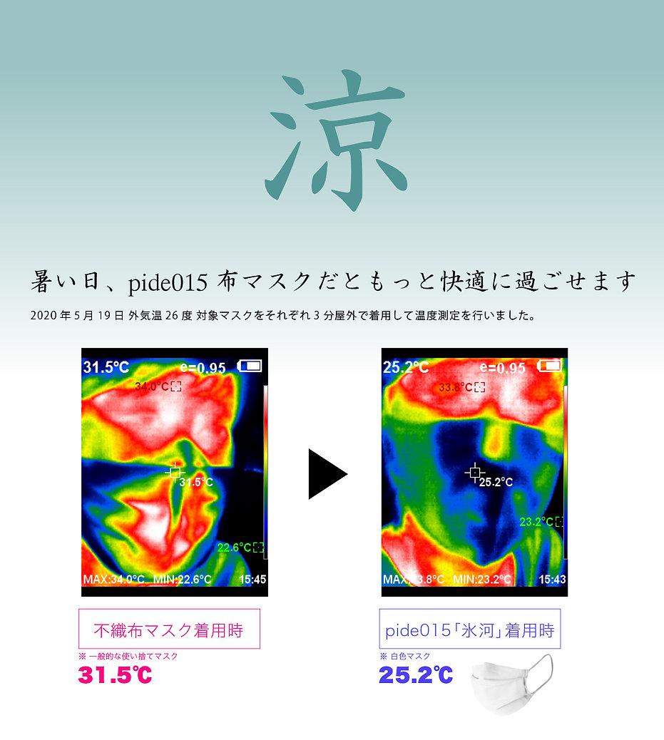 pide015-1-2.jpg