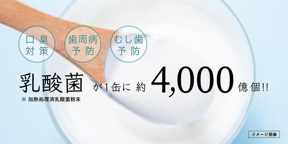 white001-6-2.jpg