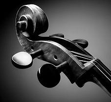 cello-scroll-PJTRVM8_edited.jpg