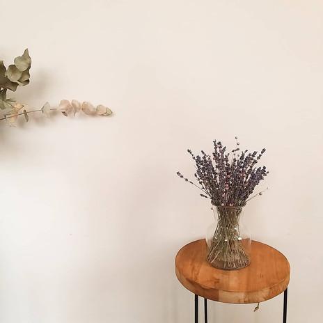 Lavendel.jpeg