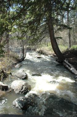 Milk Creek