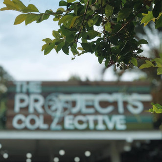 the projects collective fiji