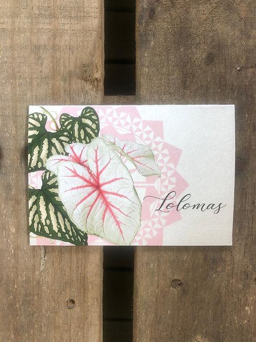 GIFT CARD Lolomas