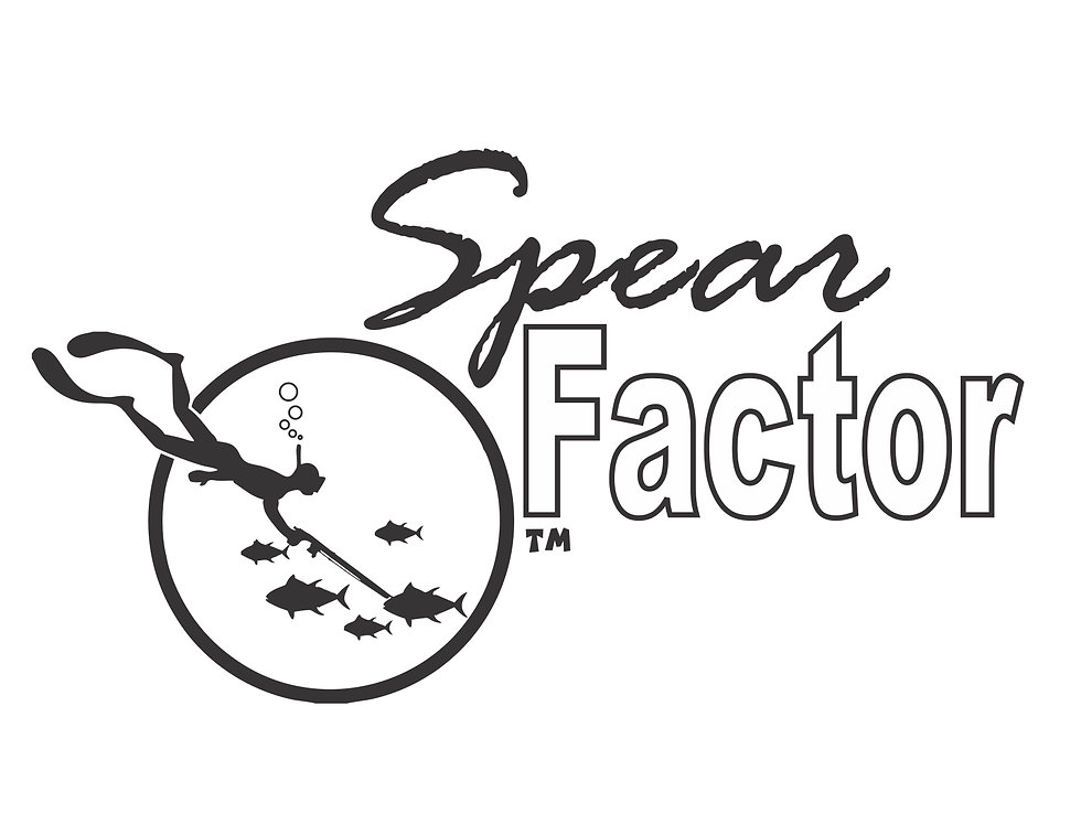 New Spear Factor copy.jpg copy.jpg