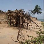 erosion prisca.jpg