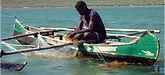 intro_aquaculture.jpg
