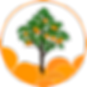 797762_stock-photo-orange-tree.png