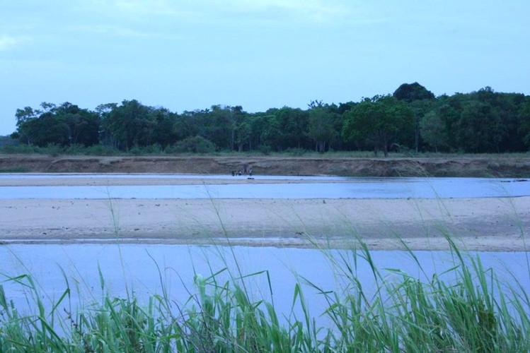 Mahaweli as it dries up