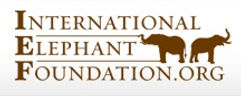 International Elephant Foundation.jpg
