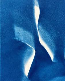 courtship dance cyanotype 15 x 21 cm