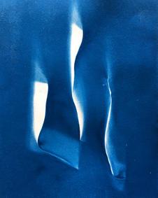 Birds cyanotype 21 x 29 cm