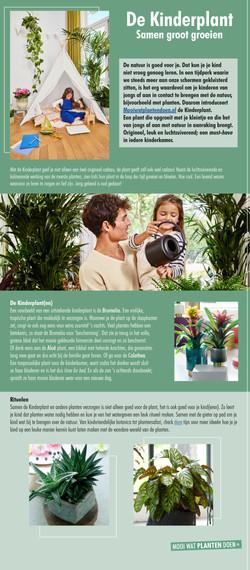 Kinderplant persbericht - Bloemenbureau Holland