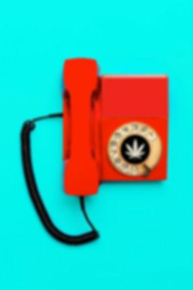 CANNECT PHONE.jpg