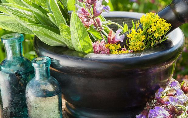 fitoterapie plante medicinale