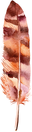 feather_04.png