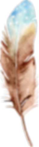 feather_18.png