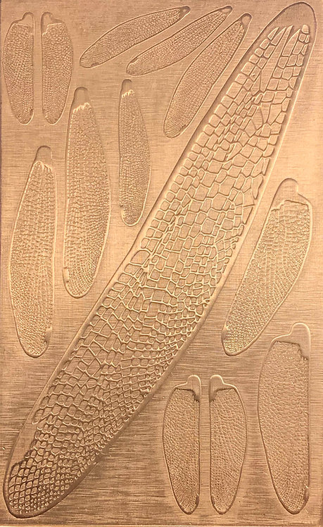 """Dragonfly Wings Copper Pattern Pressing 2-1/2"""" X 4"""""""
