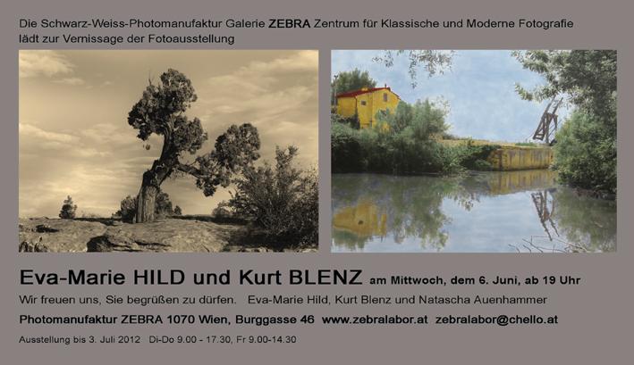 Einladung Landscapes Galerie Zebra