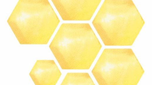 Hunnycomb Sticker Sheet