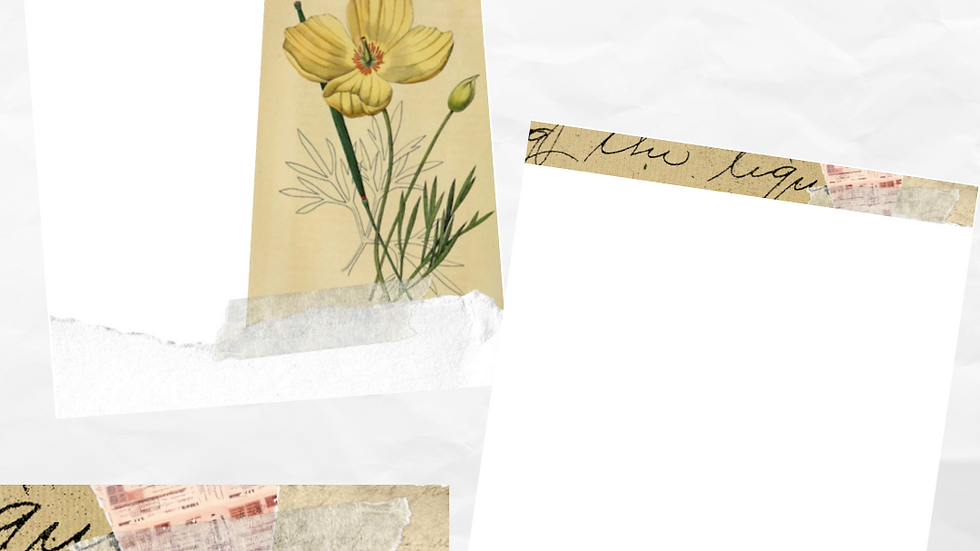 Zero Waste: Vintage Spring Letter Paper