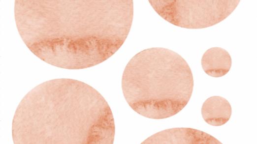 Namib Sticker Sheet