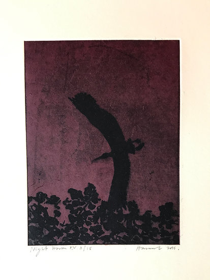 Night Heron by Tom Hammick