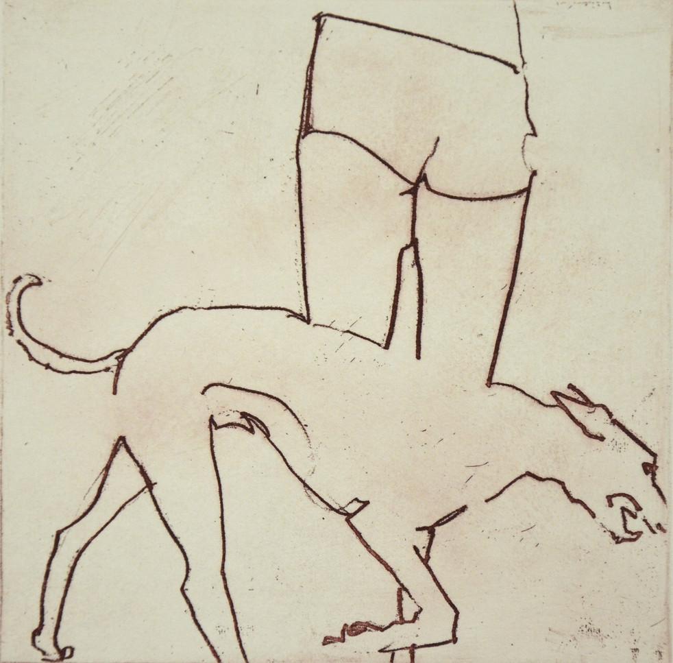 Dog and Shorts