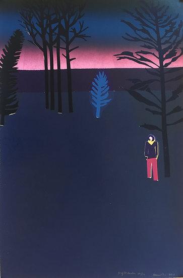 Night Garden (2015) by Tom Hammick
