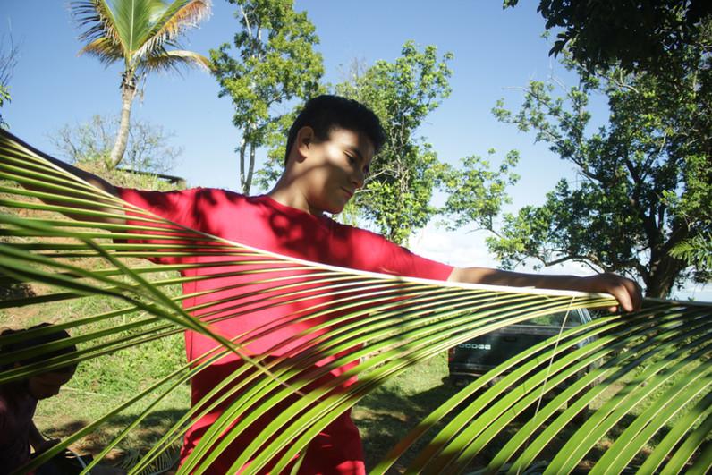 Taller tejido con palma