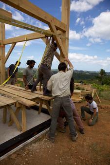 Taller Timber Frame Tabonuco11.jpg