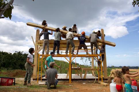 Taller Timber Frame Tabonuco9.jpg