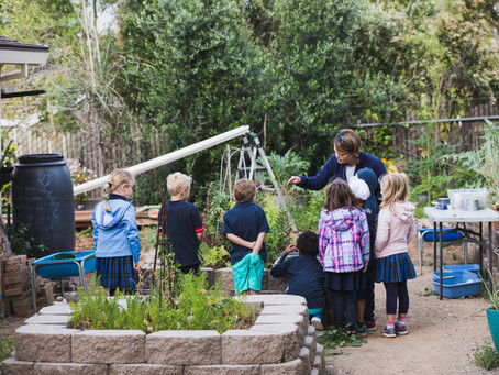 Outdoor Learning for the Complete Child - Hillbrook School