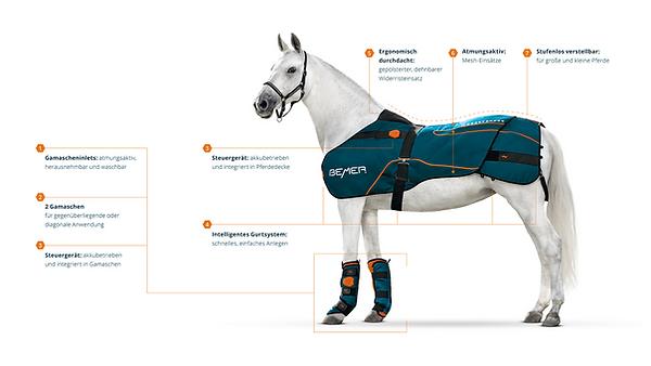 new_bemervet_horse_expliqué.png