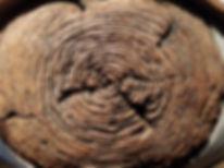 weird ceramic art, weird ceramic sculpture, susi lopera sculpture, ceramic tree, ceramic eye, susi lopera art, susi lopera, surrealist art, ceramic sculpture, tree eyes art, tree art, tree ring art, ceramic tree ring, tree ring clay, tree ring eye, memory art, memory sculpture,
