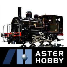 aster-hobby.jpg