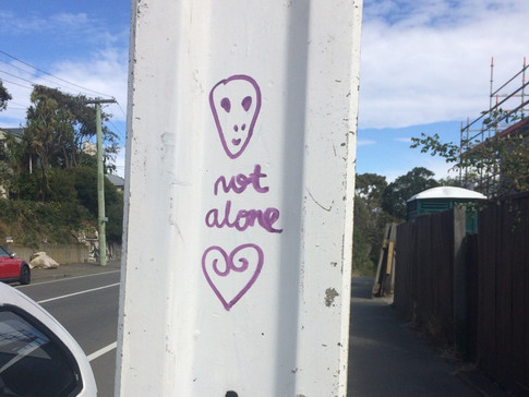 Photograph local graffiti