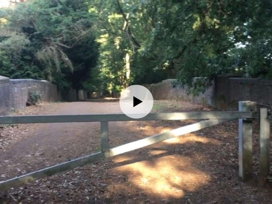 Way into Swinley Forest, from South Ascot | Uninterrupted