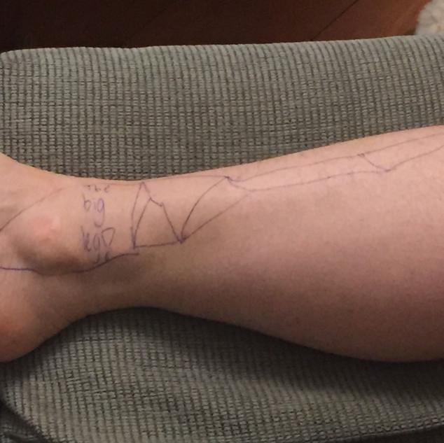 The Big Leg   Sondra's Leg Constellation