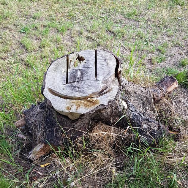 Smiley Stump | A329 Flyover