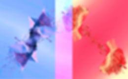 Both album art.jpg