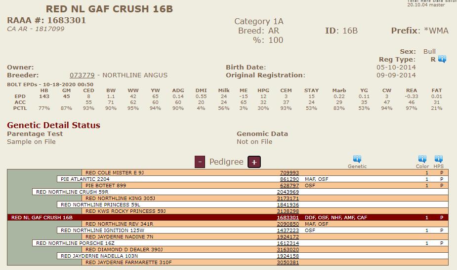 Northline Crush 16B - Diamond C Purchased Sire