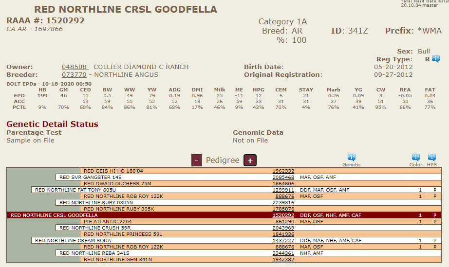 Northline Goodfella - Diamond C Purchased Sire