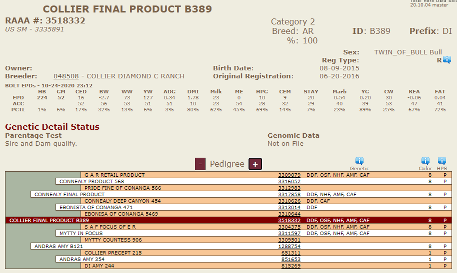 B389 (Collier Final Product) - Diamond C Bred & Raised Sire