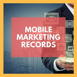 Dubai Mobile Database