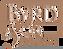 Byrd Logo.png