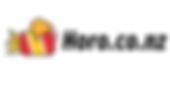 Horo Logo (google ads 2).png