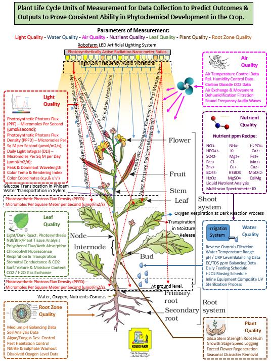 Plant Health Advanced CEA System Additio